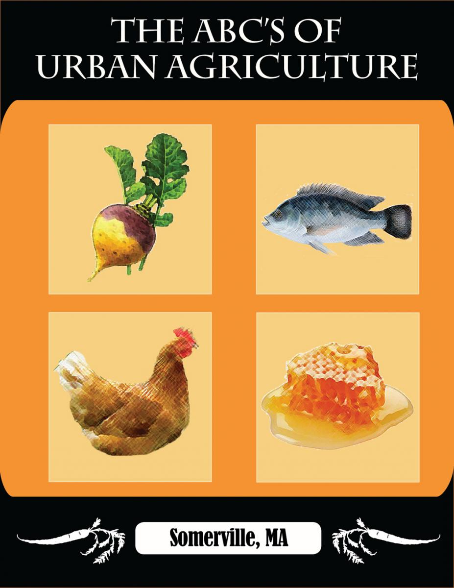 Preview of the ABC's of Urban Agriculture Guide