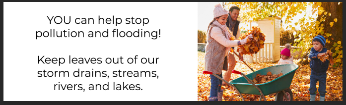 You can help stop pollution and flooding! Keep leaves out of our storm drains, streams, rivers, and lakes.