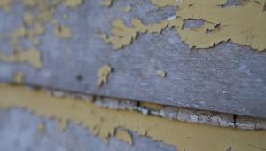 Lead paint chipping off of wood siding