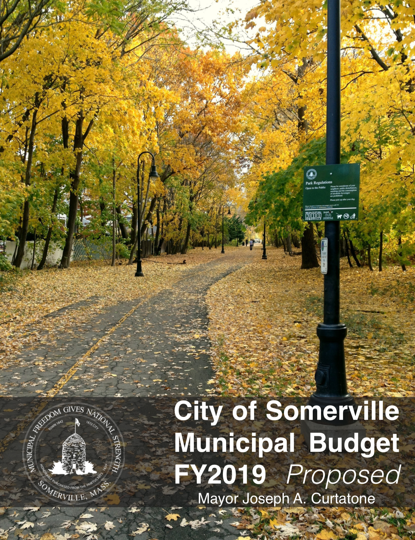 PDF preview links to FY 2019 budget document