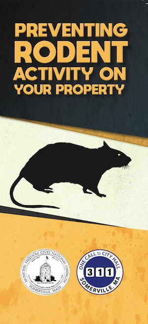 PDF preview links to rodent prevention brochure