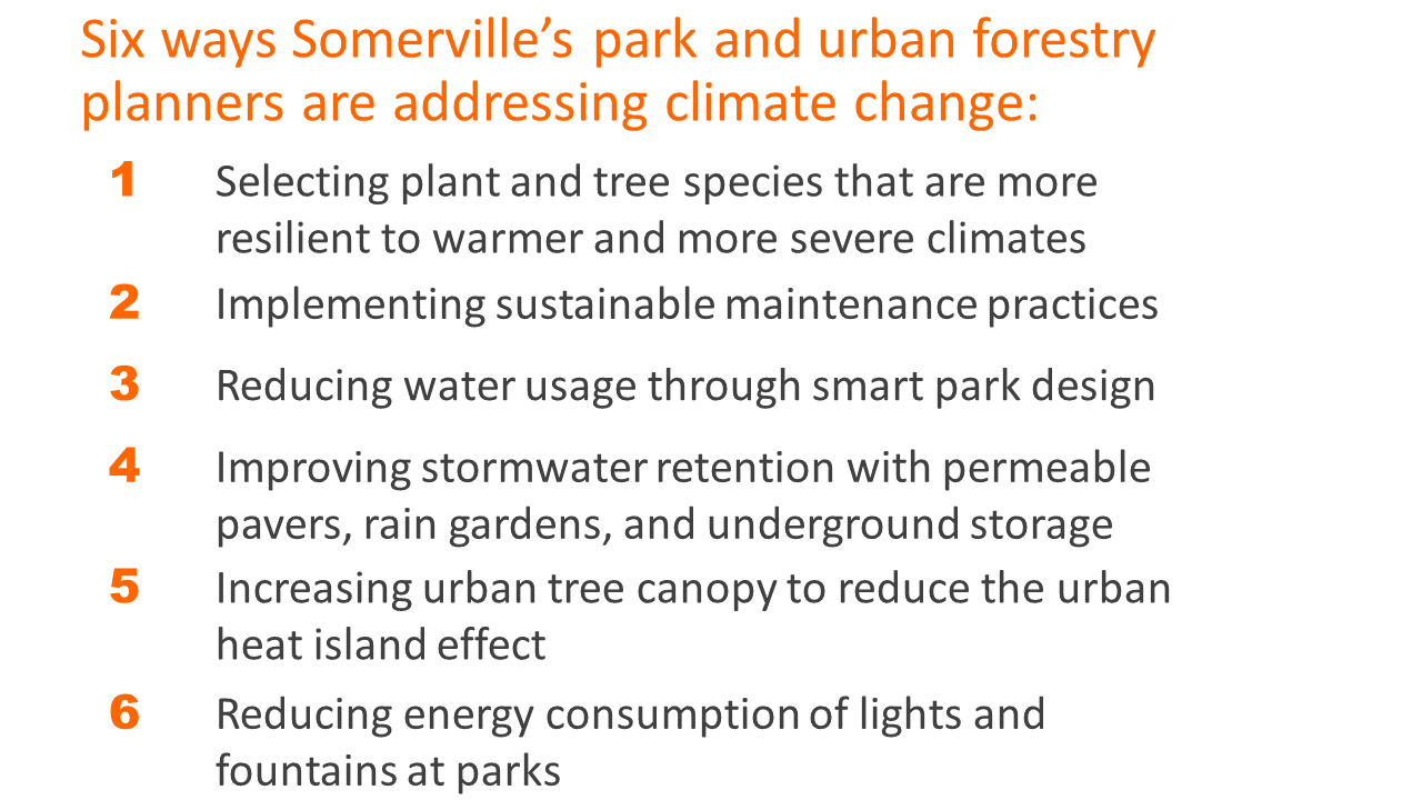 6 ways our park planners are addressing climate change: selecting hardy plant species, sustainable maintenance practices, reducing water usage in park designs, improving stormwater retention, increase the City's tree canopy, reducing light & water use