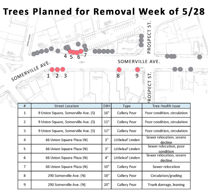 Thumbnail preview of tree removal map in linked PDF
