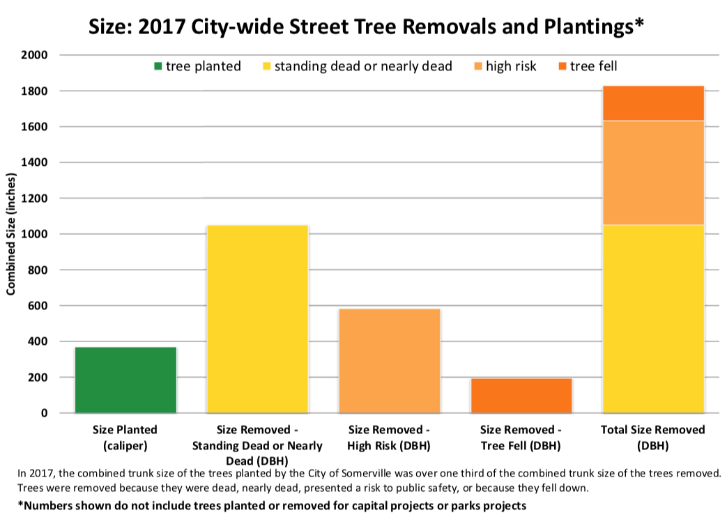 Street tree removals versus planting 2017 - tree size