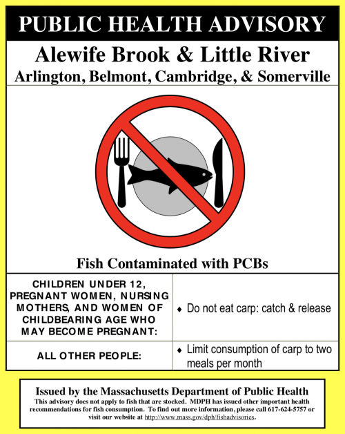 DPH recommends that children under 12, pregnant women, nursing mothers, and women that may become pregnant should not eat any carp from Alewife Brook/Little River and everyone else should limit consumption of carp to two meals per month.
