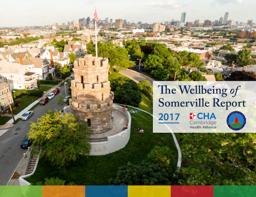 Thumbnail preview links to The Wellbeing of Somerville Report, 2017